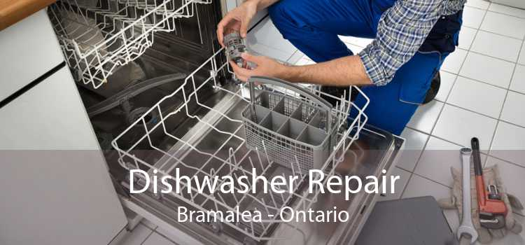 Dishwasher Repair Bramalea - Ontario