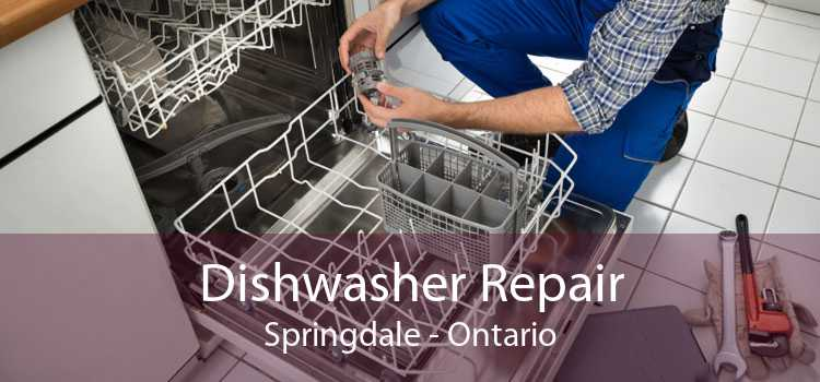 Dishwasher Repair Springdale - Ontario