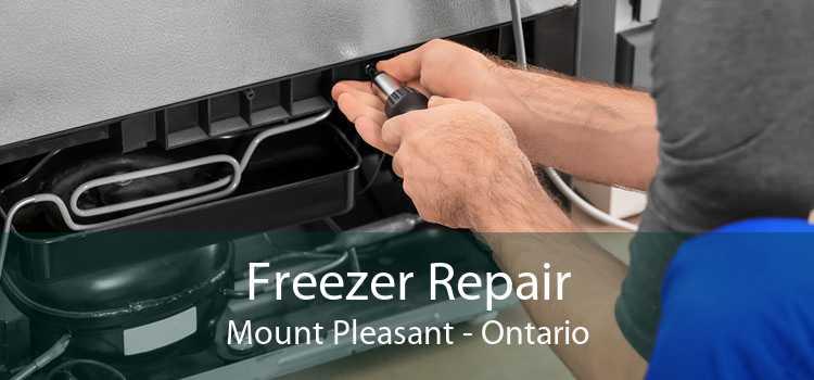 Freezer Repair Mount Pleasant - Ontario