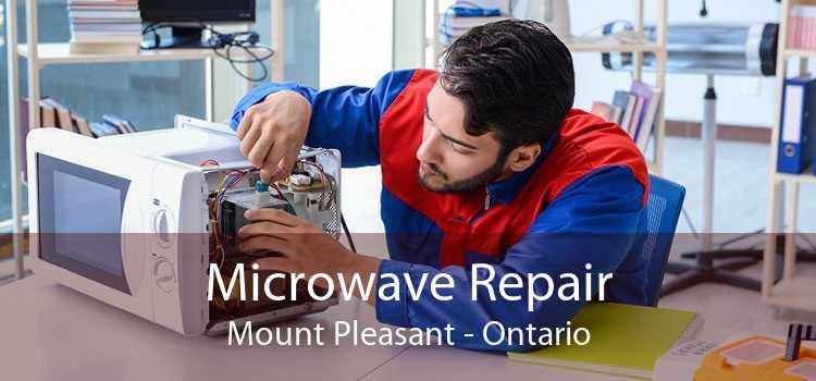 Microwave Repair Mount Pleasant - Ontario