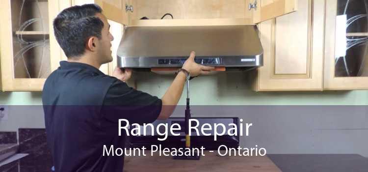 Range Repair Mount Pleasant - Ontario