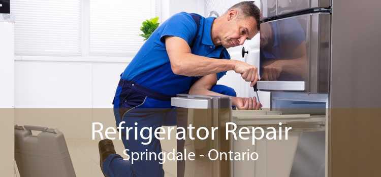 Refrigerator Repair Springdale - Ontario
